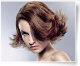 美发师国际全能造型班